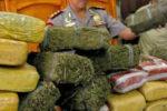 Polda Aceh Amankan 110 Kilogram Ganja di Gayo Lues