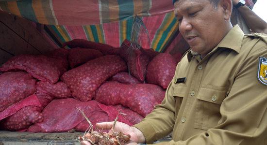 Terima Hibah Bawang Merah 8,4 Ton dari Bea Cukai