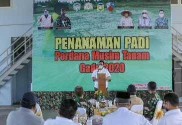 Pemerintah Aceh Perkuat Ketahanan Pangan