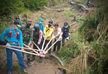 Petugas Gabungan Musnahkan 1,5 Hektar Ladang Ganja