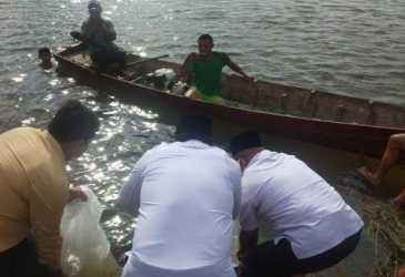 Bupati Aceh Singkil Restocking Ribuan Ikan Nila di Danau Paris, Ini Kata Pemuda