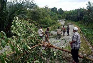 Protes Kerusakan Jalan Desa, Warga Rintangi Jalan dengan Pohon