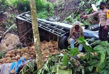 Mobil Pick Up Bermuatan Durian Terjun Bebes ke Jurang
